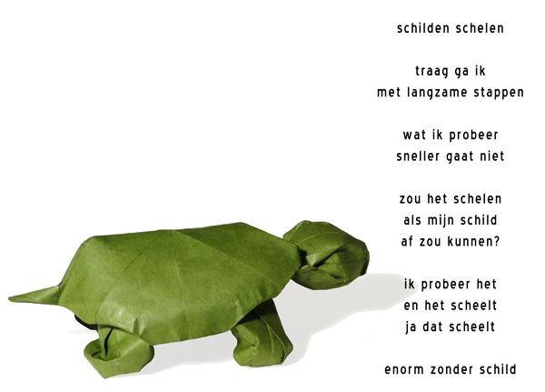 schildpad: schilden schelen